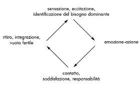 ciclo contatto gestalt
