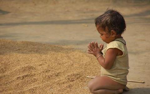 Gratitudine e Abbondanza